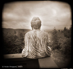Buddha_with_view_2